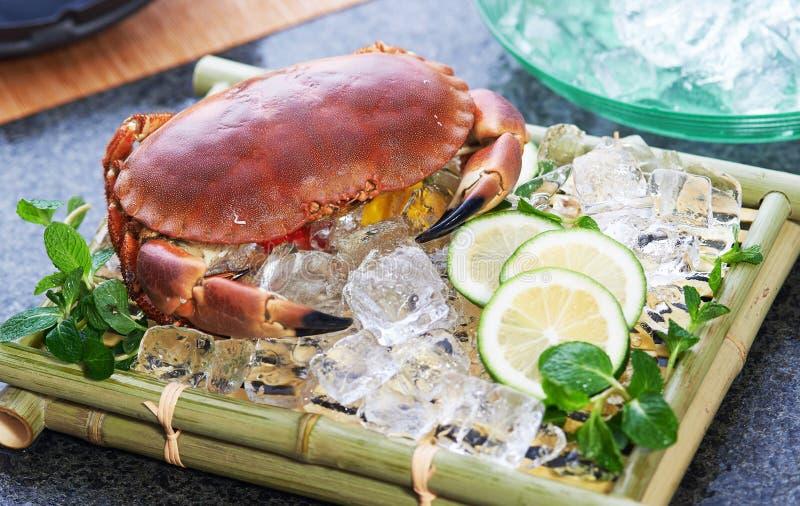 新鲜的螃蟹 免版税库存图片