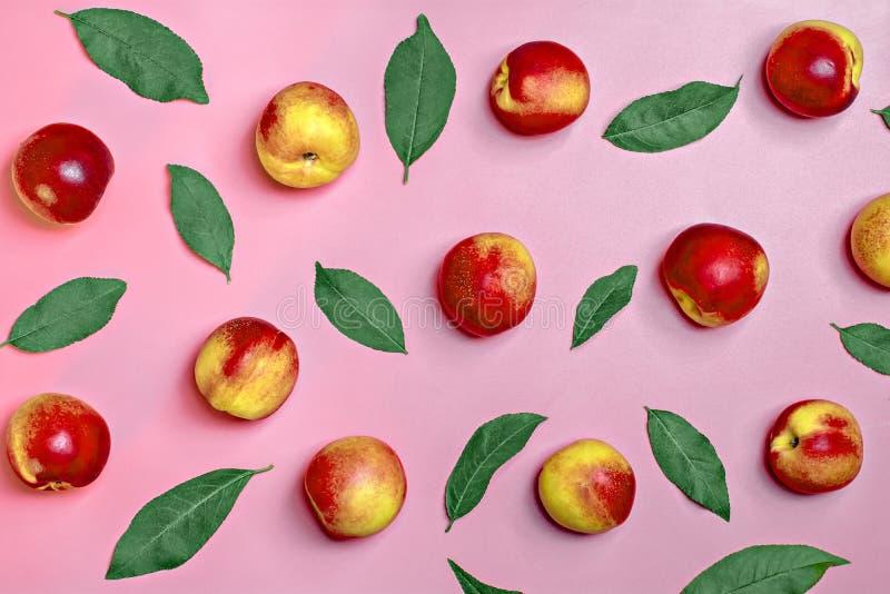 新鲜的被收获的油桃,板材,在桃红色有机背景菜维生素角质素自然的桃子留给谎言圆 免版税库存图片