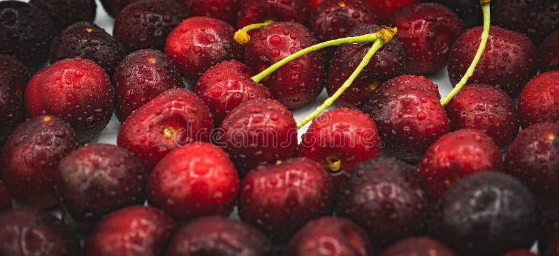 新鲜的被洗涤的樱桃 库存照片