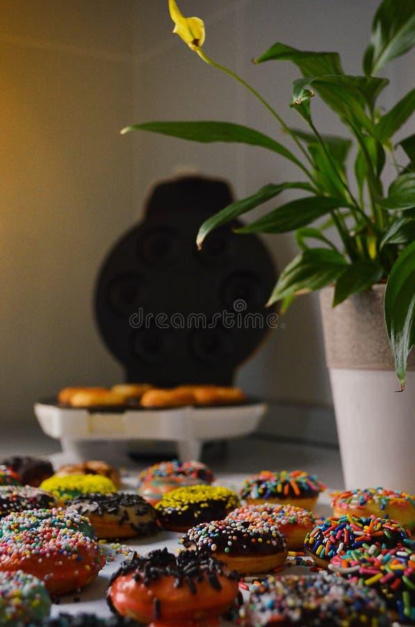 新鲜的被烘烤的美国油炸圈饼 库存图片