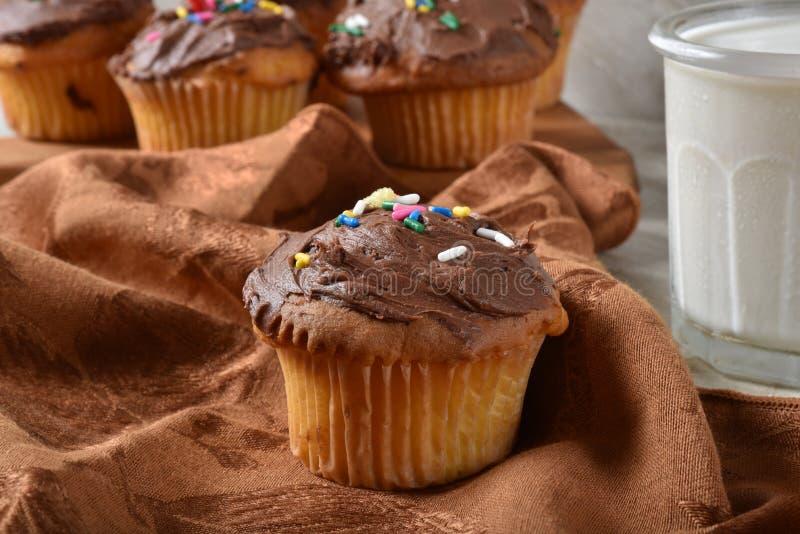 新鲜的被烘烤的自创杯形蛋糕 图库摄影