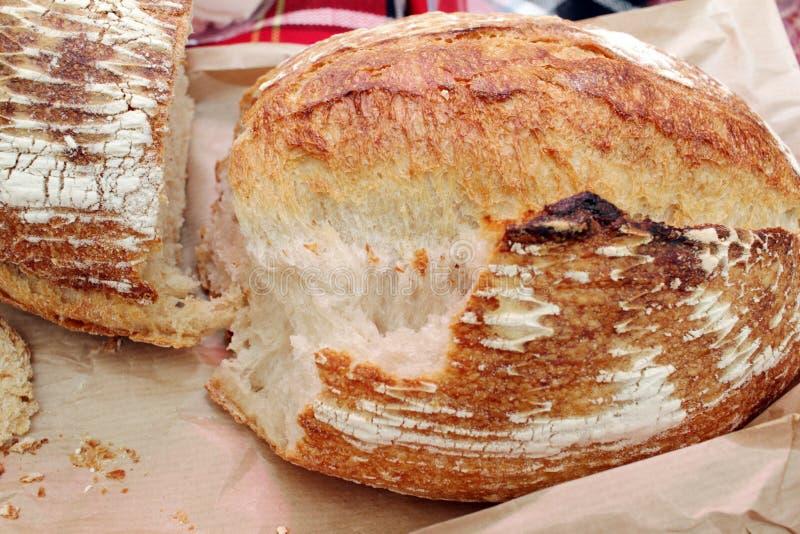 新鲜的被烘烤的面包 酥脆面包 可口新近地被烘烤的面包 库存图片