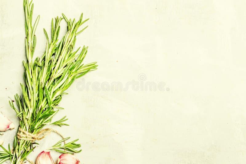 新鲜的迷迭香和桃红色新鲜的大蒜,食物背景,顶视图 库存照片