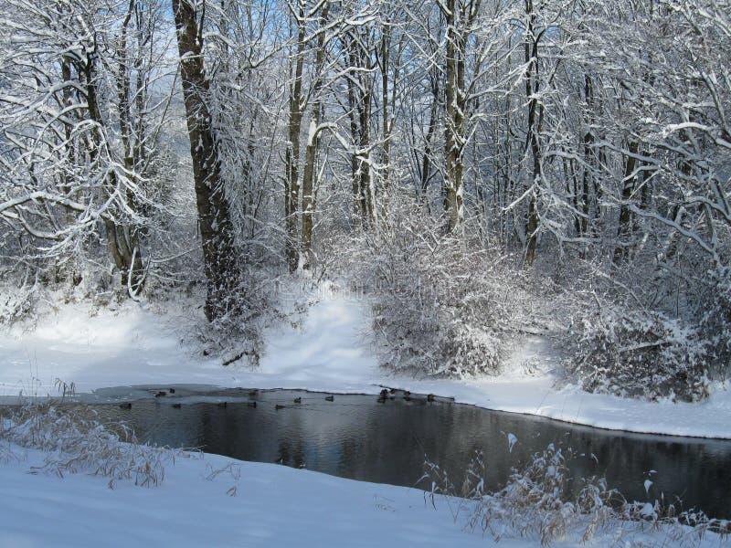 新鲜的雪和河 库存图片
