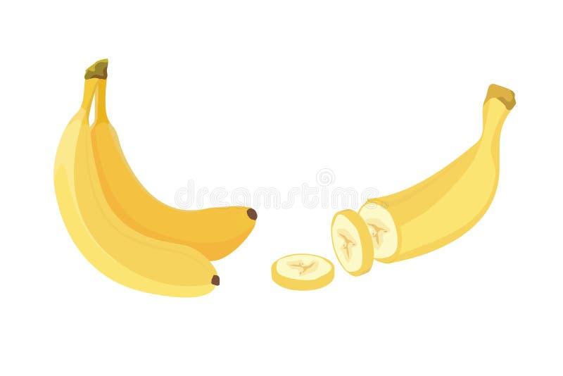 新鲜的香蕉结果实,传染媒介例证的汇集 被剥皮的和切的香蕉 库存例证