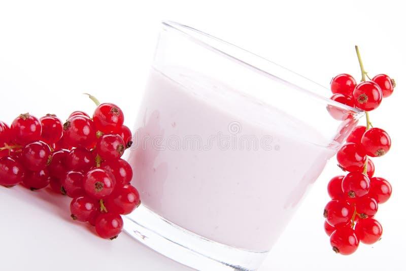新鲜的鲜美无核小葡萄干酸奶震动点心   免版税库存照片