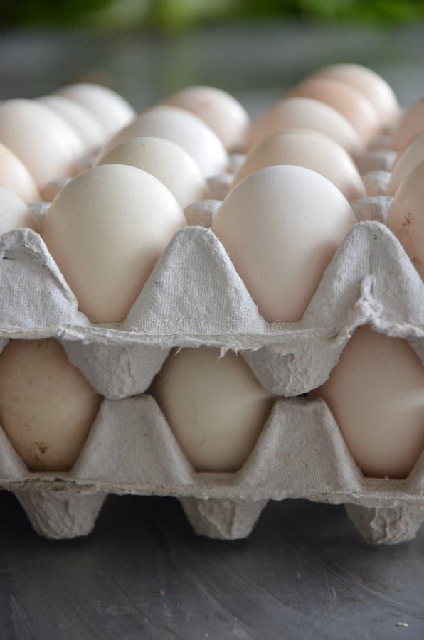 新鲜的鸡蛋在市场上 免版税库存照片