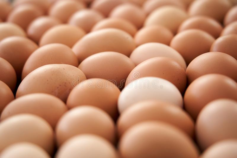 新鲜的鸡蛋背景待售在市场上 免版税库存图片