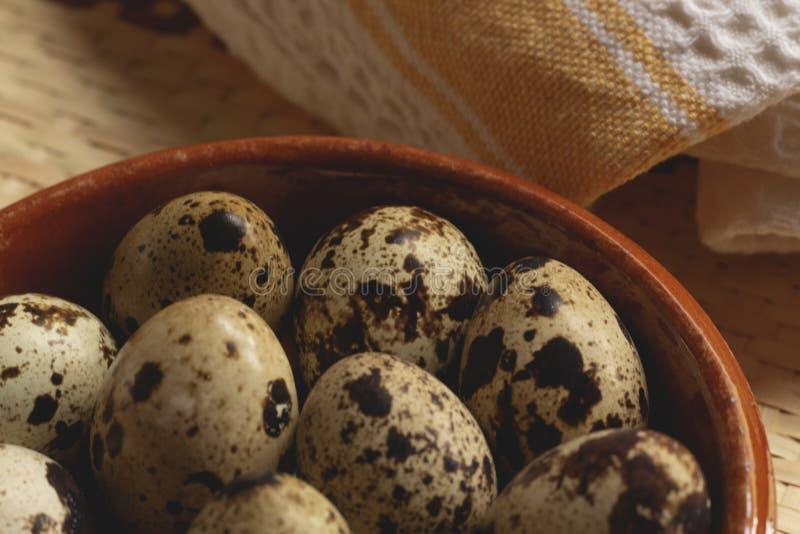 新鲜的鹌鹑蛋准备好烹调 库存图片