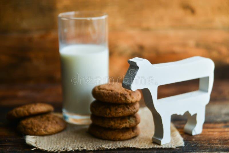 新鲜的麦甜饼和牛奶在木背景与燕麦钉  库存图片