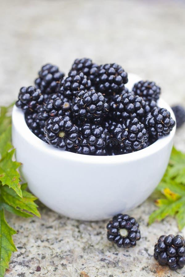 新鲜的黑莓 免版税库存图片