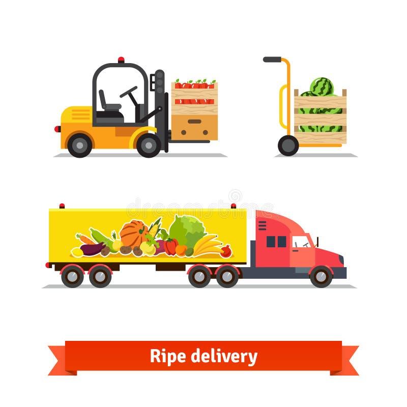 新鲜的水果和蔬菜交付 皇族释放例证