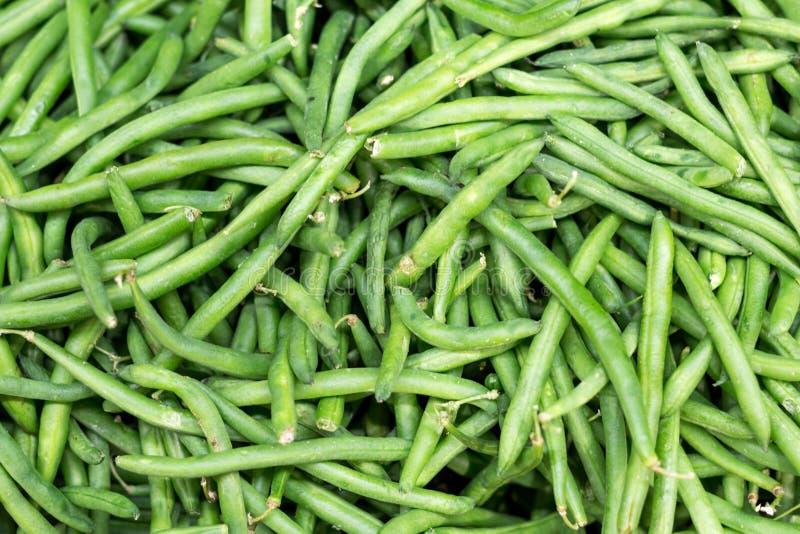 新鲜的绿色云豆 免版税库存照片