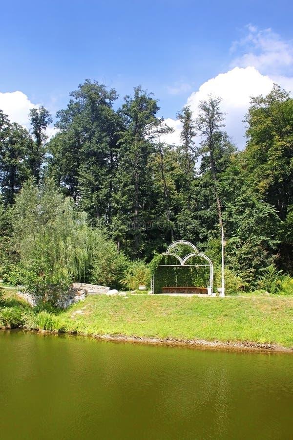 新鲜的绿色树荫处和池塘 库存图片