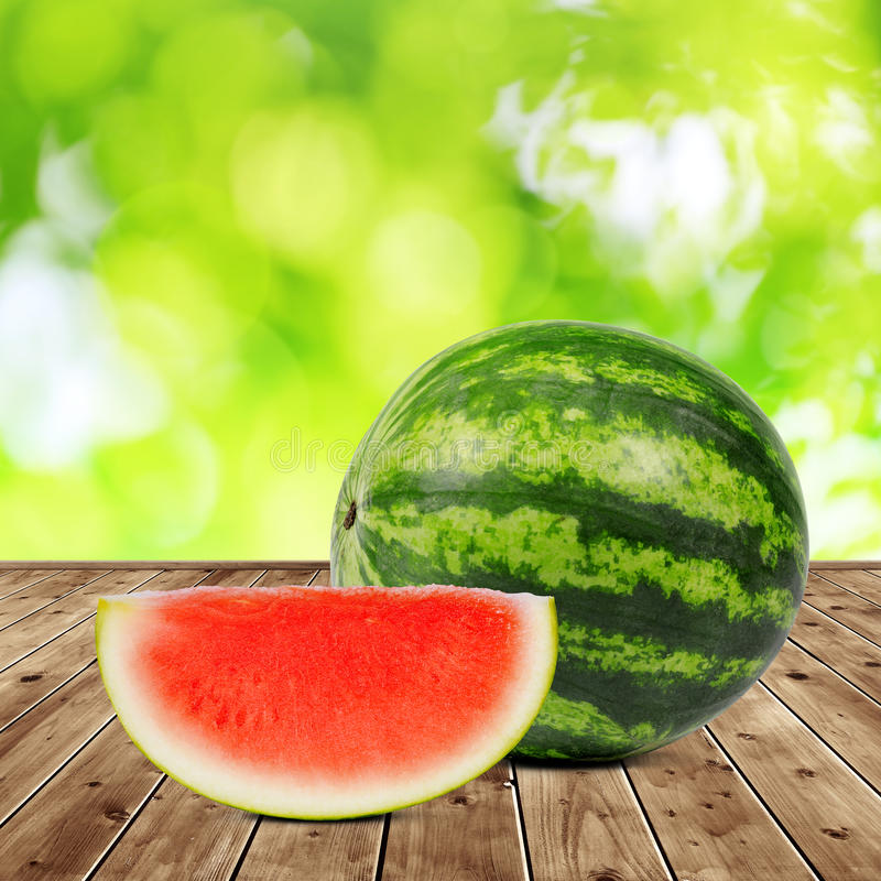 新鲜的绿色瓜 免版税库存图片