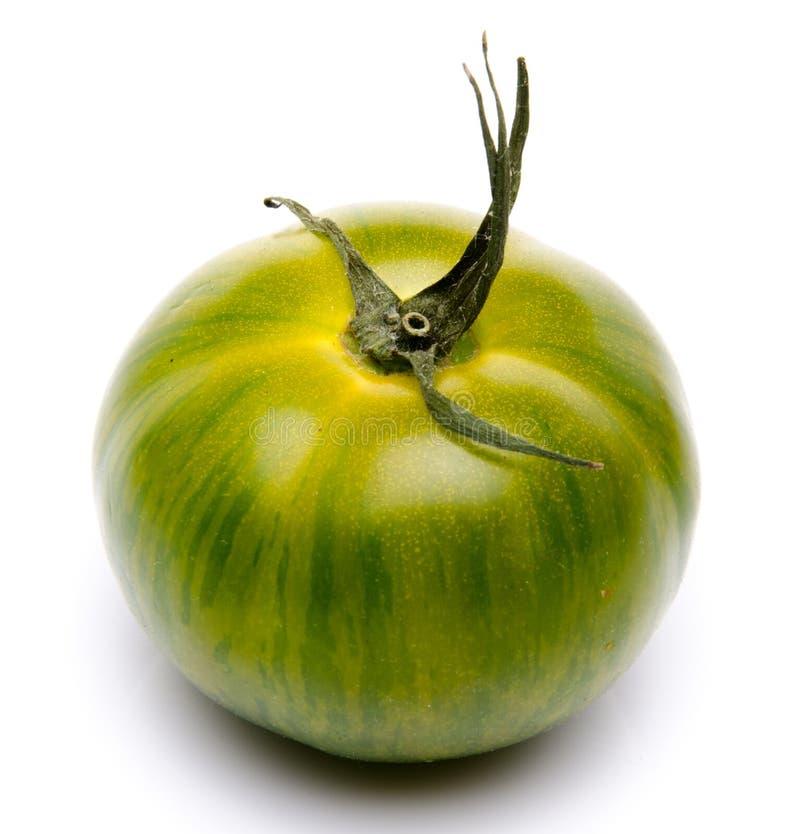 新鲜的绿色蕃茄 库存图片