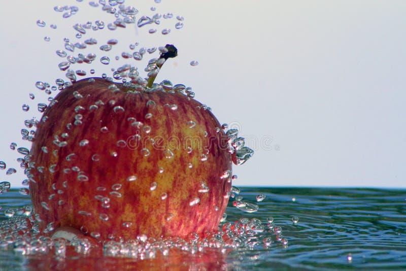 新鲜的Apple 免版税库存照片