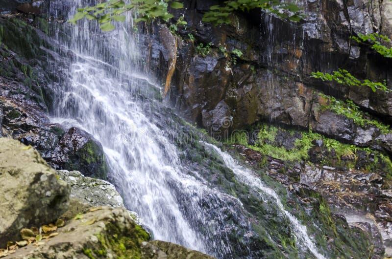 新鲜的Boyana瀑布在深森林和岩石里 图库摄影