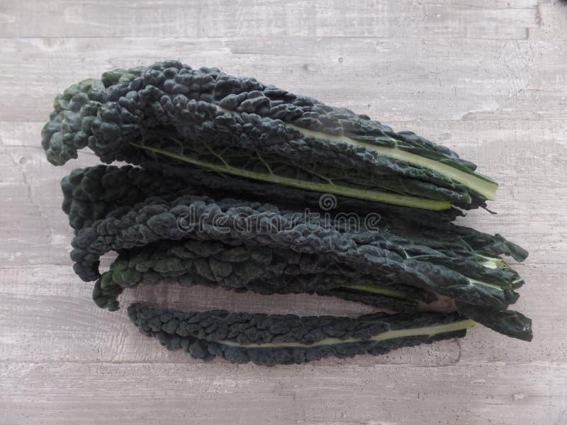 新鲜的cavolo nero 免版税库存照片