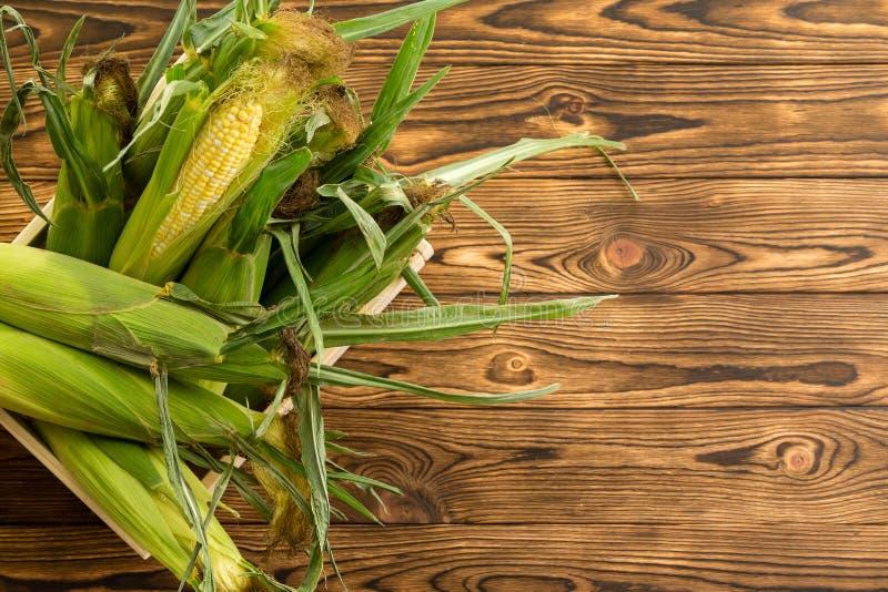 新鲜的mealies、玉米或者玉米棒子 免版税库存图片
