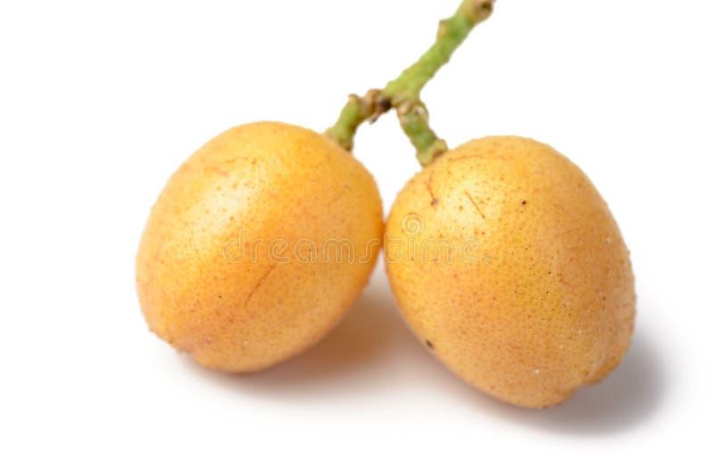 新鲜的wampee果子 免版税库存图片