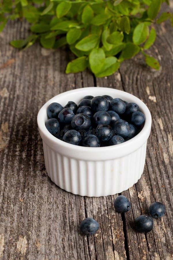新鲜蓝莓的碗 免版税图库摄影