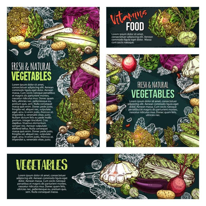 新鲜蔬菜和蘑菇黑板横幅 库存例证