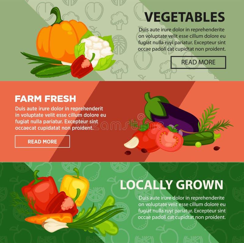 新鲜蔬菜增长在农厂互联网广告 皇族释放例证