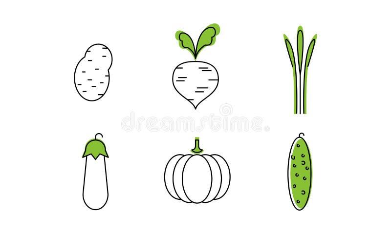 新鲜蔬菜排行象集合,土豆,甜菜,茄子,南瓜,黄瓜,有机健康食品传染媒介例证  皇族释放例证