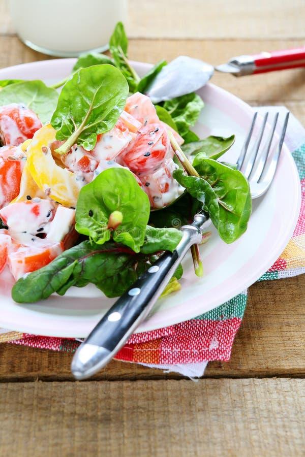 新鲜蔬菜沙拉用希腊酸奶 图库摄影