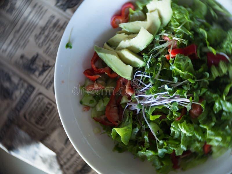 新鲜蔬菜沙拉用黄瓜,莴苣,鲕梨,绿色新芽,在白色板材的甜椒 碗与菜的沙拉 免版税图库摄影