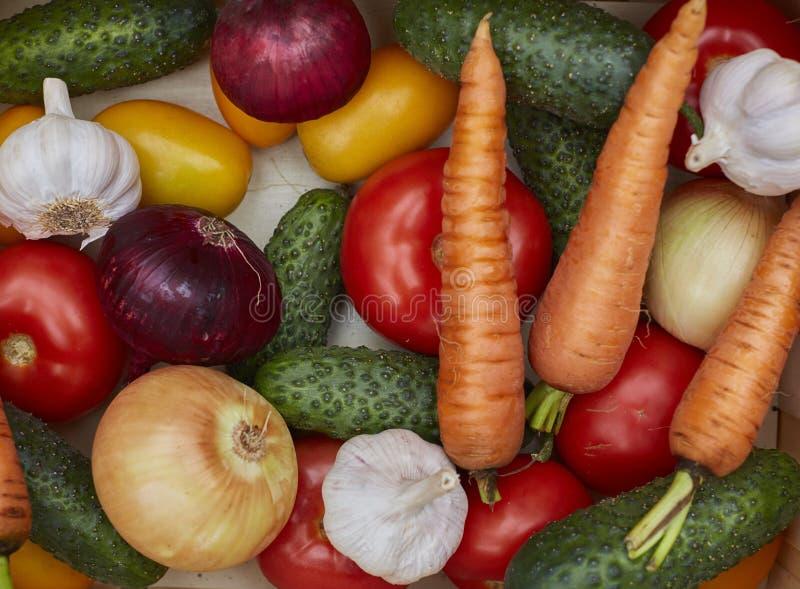 新鲜蔬菜的分类在一个木箱的 库存照片