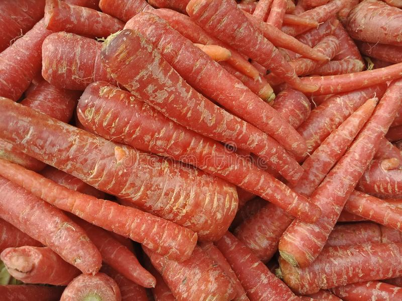 新鲜蔬菜红萝卜为吃 库存图片