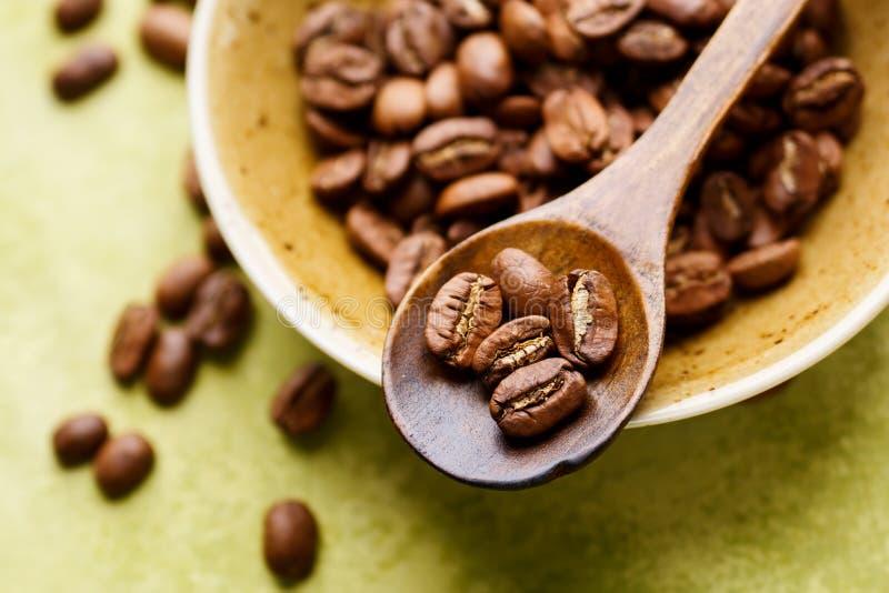 新鲜豆的咖啡 图库摄影