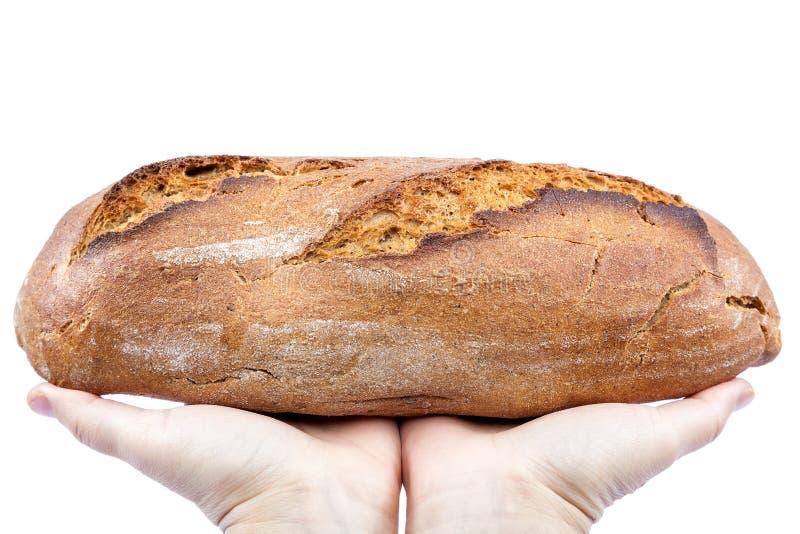 新鲜面包在白色背景的手上 库存照片