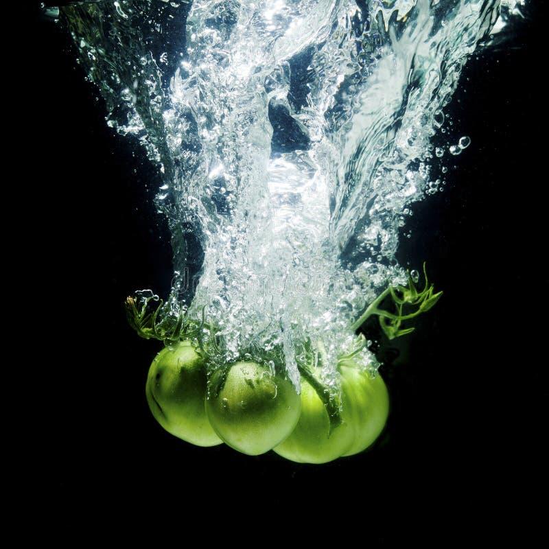 新鲜,绿色蕃茄 库存图片