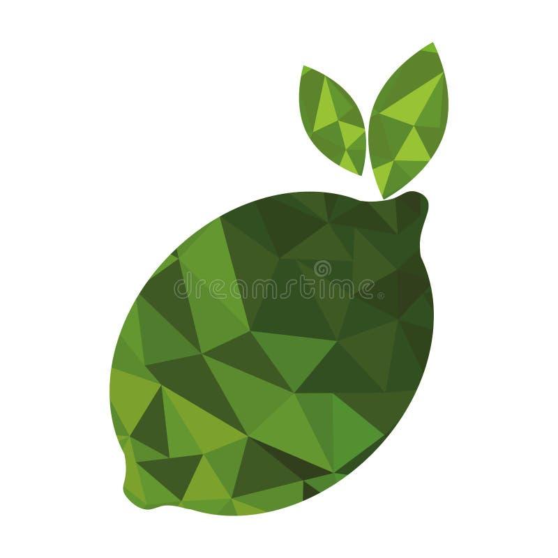 新鲜水果低多样式 库存例证