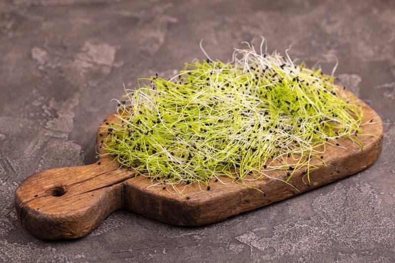新鲜mircogreen在葡萄酒cuttig板的韭葱 免版税库存图片