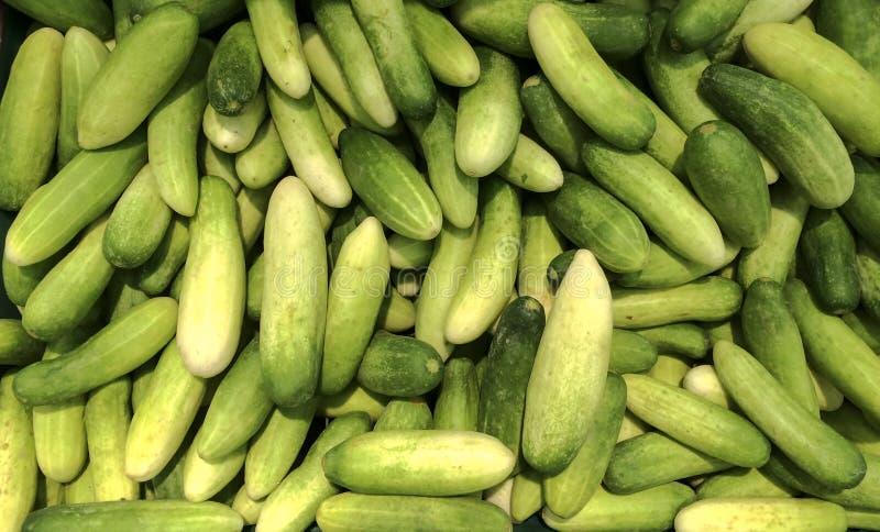 新绿色泰国黄瓜收藏室外在市场上 免版税图库摄影