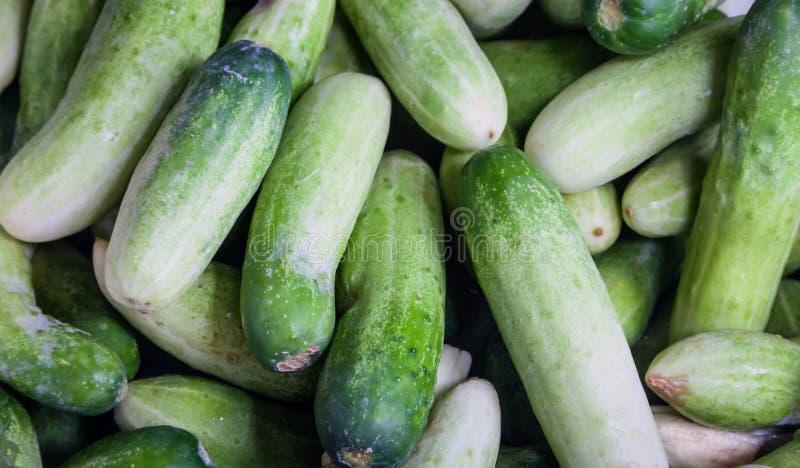 新绿色黄瓜收藏室外在市场上 免版税图库摄影