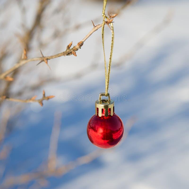 新年` s玩具球在分支垂悬 免版税库存照片