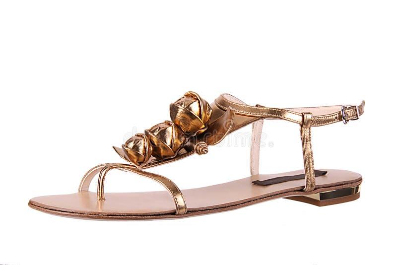 方式华丽鞋子womans 图库摄影