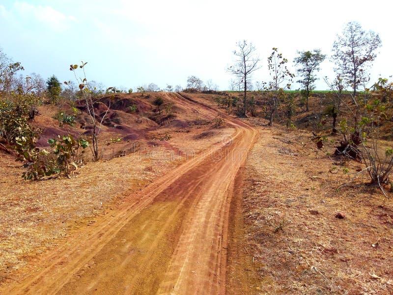 方式通过密林, satpura印度 免版税库存图片