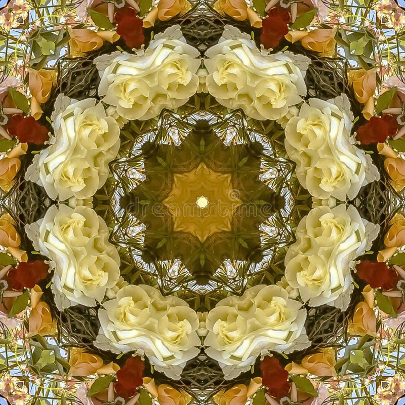 方形的框架减弱在圆安排的黄色和白花的声音在婚礼在加利福尼亚 皇族释放例证