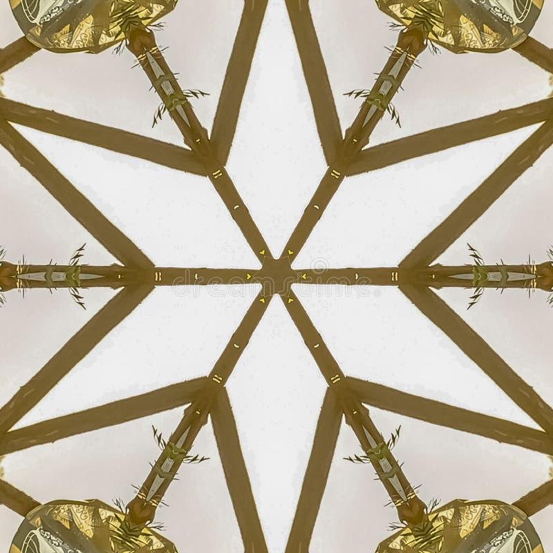 方形的框架A星形状由装饰Chuppah日落做了 皇族释放例证