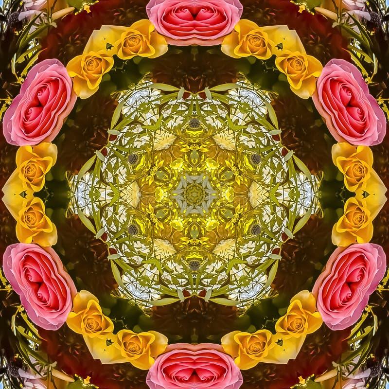 方形的玫瑰框架圆设计与绿色叶子和天空的 向量例证