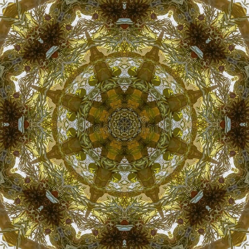 方形的花arrangemnet的叶子框架有角视图没有瓣 库存照片