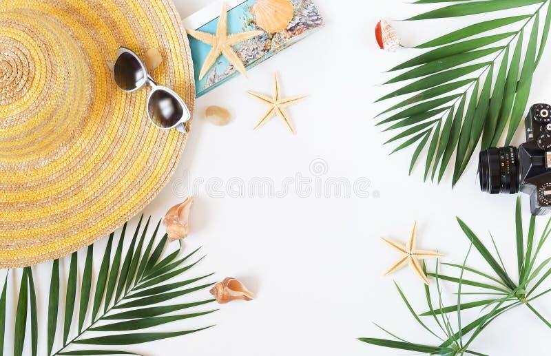 旅客辅助部件,在白色背景的热带棕榈叶分支与文本的空的空间 库存图片