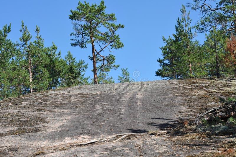 旅游业在Karelli俄罗斯 免版税库存图片