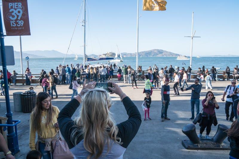旅游妇女为从码头39的阿尔卡特拉斯岛照相在码头的一个繁忙的区域,与 免版税库存照片